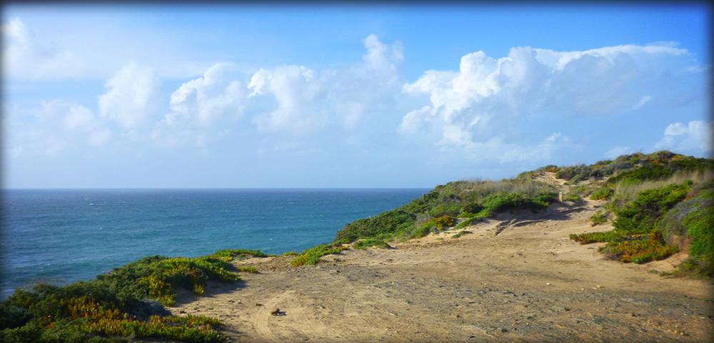 Strand und Dünen in Portugal am Meer- Urlaub mit dem Bus - Campingbus mieten